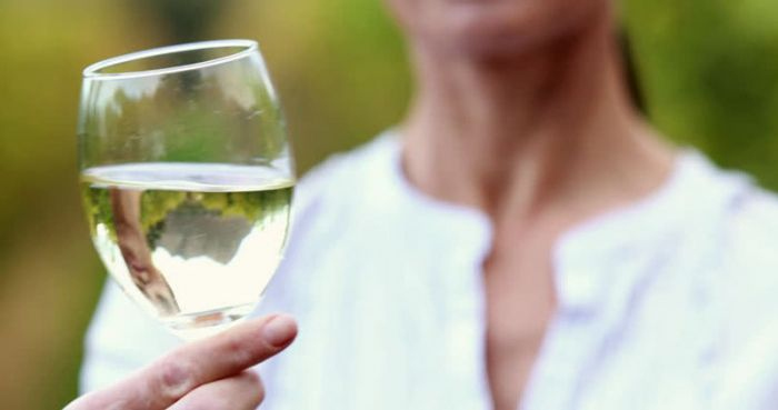 Beneficial effects of white wine polyphenols-enriched diet on Alzheimer's disease-like pathology