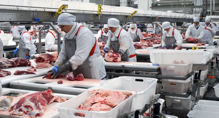 Primary concerns regarding the application of electrolyzed water in the meat industry