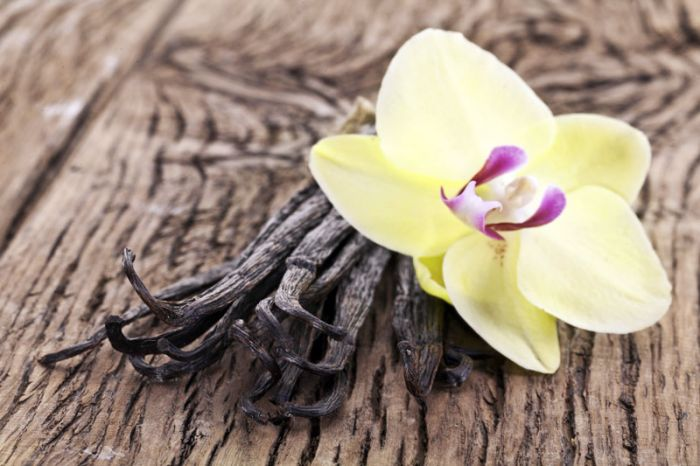 Frigerio Food Ingredients solutions for the vanilla market
