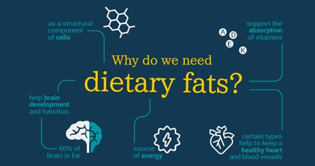 EUFIC presents an interesting infographic on Dietary Fats