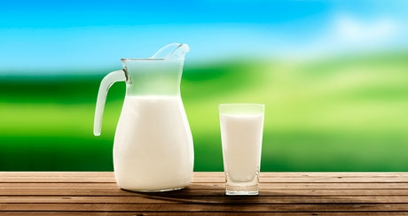 Organic vs. conventional milk, which are the differences?